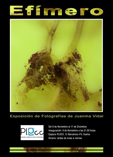 Cartel-Juanma-Vidal