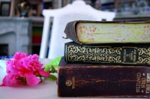 Algunos libros de la biblioteca personal de Garfias / Archivo Francisco Garfias / Donado por Paco López