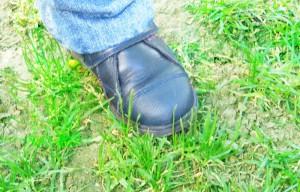 La cantidad de superficie que se necesita para mantener un estilo de vida es lo que se conoce como huella ambiental o ecológica.