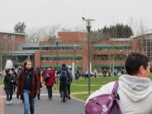La Universidad de Limerick está considerada una de las mejores universidades de toda Irlanda, y está en el ranking de las 100 mejores universidades de todo el mundo.