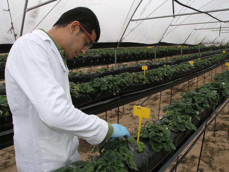 Adesva está a la vanguardia en materia de investigación. / Foto: citadesva.com.