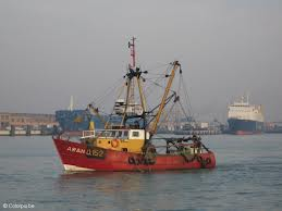 Aumenta en 1.000 toneladas la cuota de boquerón en el Golfo de Cádiz y Sur de Galicia