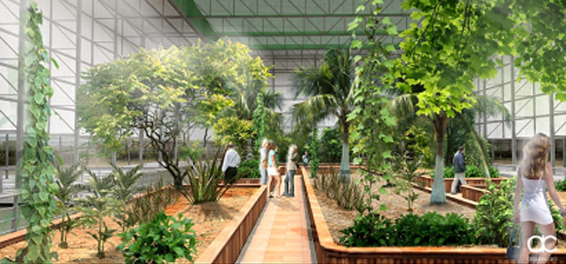 La renovación del Botánico Celestino Mutis culmina el proyecto de ...