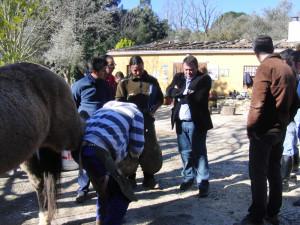 El delegado territorial, con los alumnos del curso de Formación Profesional para el Empleo 'Herrador de caballos', que se desarrolla en Galaroza.