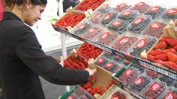El sector de los frutos rojos de Huelva con presencia en la feria hortofrutícola de Berlín