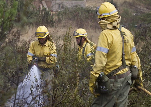 El incendió afecto a media hectárea del Paraje Marismas del Polvorín.