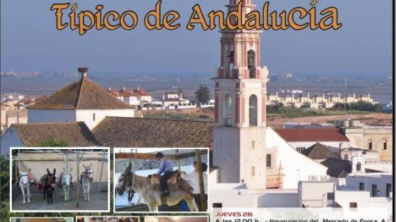 Los ayamontinos disfrutan desde hoy de un Mercado de Época Típico de Andalucía