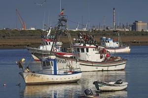 El puerto de Punta Umbría es el que mayor volumen de pesca ha registrado en 2012