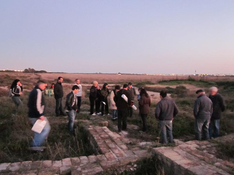 Imagen de las actividades organizadas por Platalea.