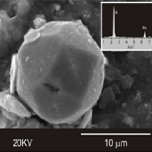 La investigación pretende dar solución a la contaminación a través de bacterias sulfato-reductoras.