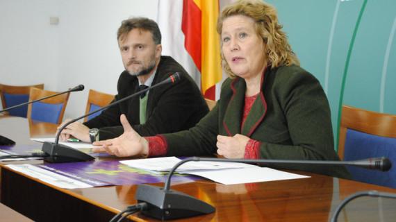 El IAM impulsa el trabajo de los grupos específicos del Observatorio Andaluz de Violencia de Género