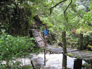 En Colombia, en el Valle de Coroico.