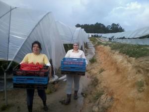 Las ayudas también contemplan el fomento de la mujer en el ámbito rural.
