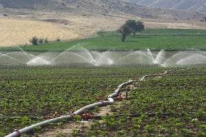 Agua en el Condado de Huelva.