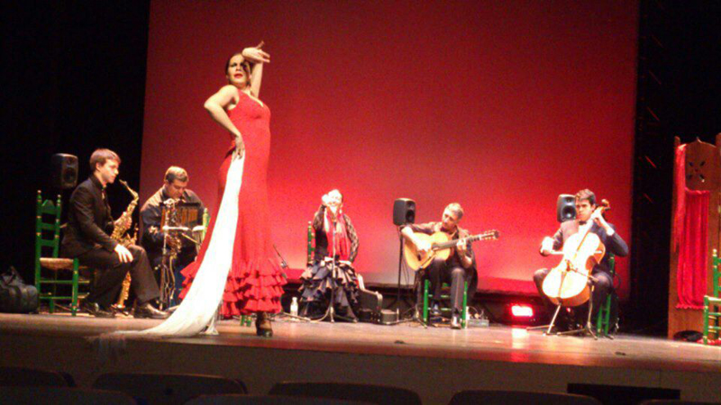Se trata de un montaje de flamenco que no dejará a nadie indiferente.