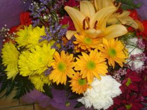Las plantas y flores brindan algunos beneficios, como alegrar y decorar las estancias.