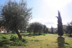 Parque que a partir del 14 de abril se llamará Enrique Seijas. / Foto: granadaimedia.com.