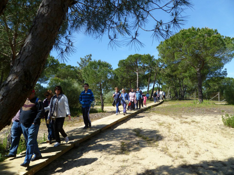 Los asistentes caminaron desde la Laguna hasta la ermita.