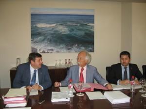 La reunión plenaria ha sido presidida por Julio Revilla.