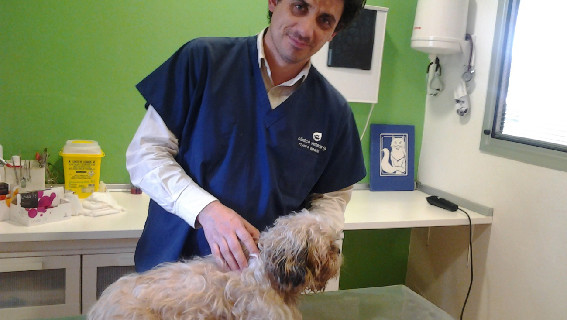 Francisco Rivero, el veterinario solidario de la Sierra, espera que su iniciativa sea imitada por otros profesionales