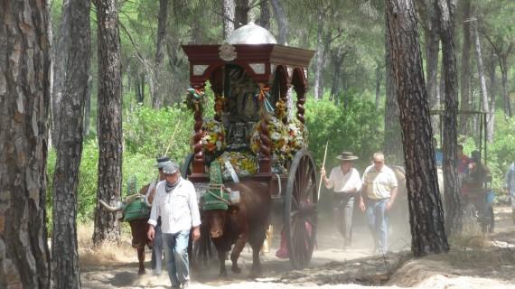 La Hermandad de Manzanilla cambiará este año los bueyes de su carreta por mulos para cumplir los nuevos horarios