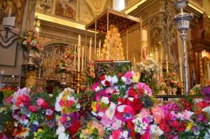 Colorido de las flores ante la Blanca Paloma.