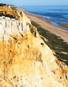 La visita realizará un recorrido entre el Parador de Mazagón y Matalascañas.
