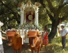 La Hermandad del Rocío de Villalba caminará un año más con la Pastora en su Simpecado que vestirán el domingo de Reina