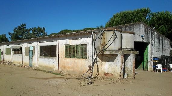 Imputadas dos personas por un delito contra el derecho de los trabajadores tras inspeccionar una finca agrícola en La Redondela