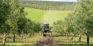 Asaja es una organización de representación del sector agrario. / Foto: emartv.com.