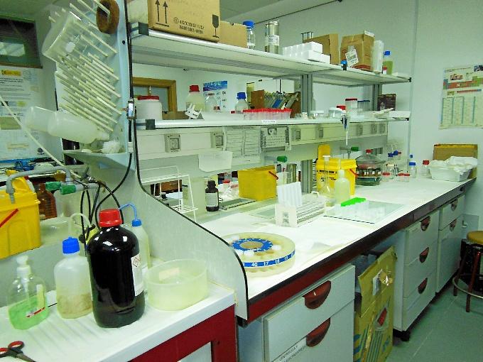 Parte del laboratorio en el que este grupo del Centro de Investigación en Salud y Medioambiente realiza su trabajo.