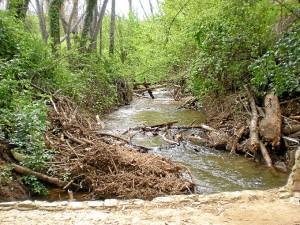 La ribera de Jabugo, alimentada por el río Múrtiga. / Foto: www.juntadeandalucia.es