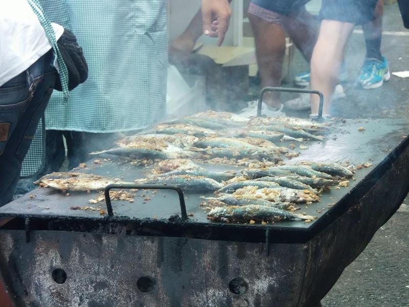 En total se han repartido 800 kg de sardinas de forma gratuita.