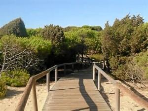 La playa de los Enebrales, un paraíso natural. / Foto: ehuelva.es.