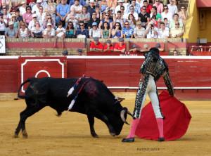 David de Miranda. / Foto: Pedro Delgado.