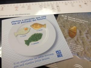 Detalle de los folletos informativos que se entregan en la campaña