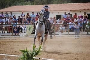 El caballo es el prinicpal protagonista de esta Feria.