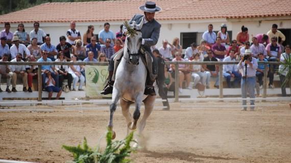 Aroche celebra la 25 edición de FEGAR acogiendo el Campeonato Andaluz de Doma Vaquera