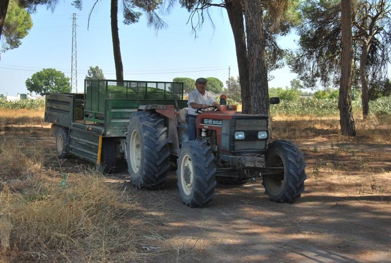 Abonados en diciembre 52,3 millones en ayudas agroambientales a 11.212 productores agrícolas y ganaderos
