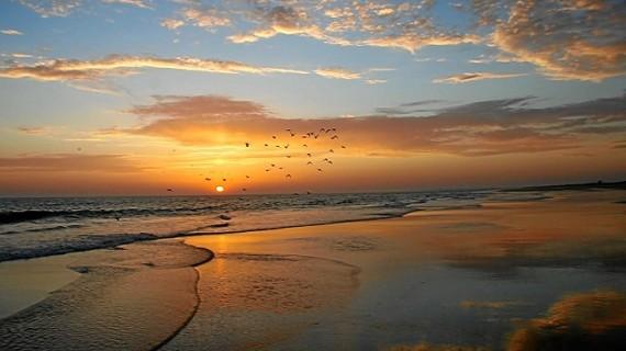 La playa de Doñana, una de las diez playas más largas del mundo
