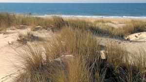 Las playas onubenses, otro de los emplazamientos del documental.