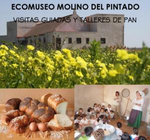 El Ecomolino organiza visitas muy variadas.