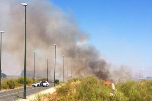 El incendio se propagó a lo largo de la tarde, cortando la carretera. Foto: Javier Losa