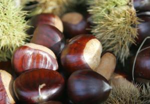 Las castañas, un producto típico de otoño.