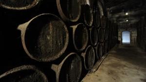 El pregón al vino será el jueves 17 en Vinícola el Condado. / Foto: Sentire