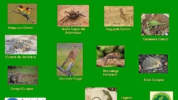 El Aula de la Naturaleza de Huelva se suma a la conmemoración del Día de los Animales