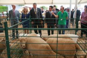 Este año la Feria ha recuperado su vinculación con el sector ganadero.
