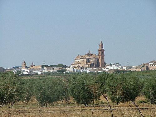 Diversos estudios sitúan el origen de la manzanilla en este pueblo onubense.