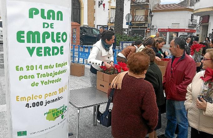 Valverde reparte una flor de Pascua por cada uno de los empleos generados con el Plan de Empleo Verde