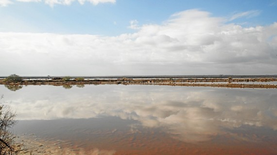 Punta Umbría inicia los trámites para extender la Reserva de la Biosfera 'Marismas del Odiel' a todo su término municipal